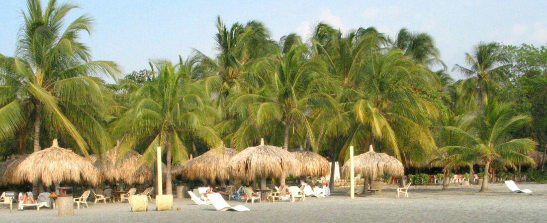 Karibikstand mit Palmen