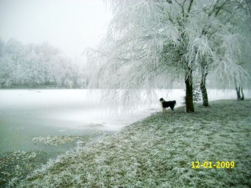 serley-im-winter1.jpg